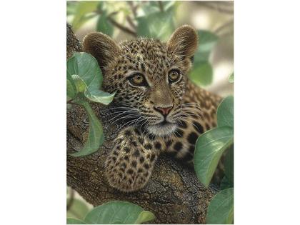 Bild 3D Leopardunge i träd