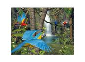 Bild 3D Papegojans Paradis
