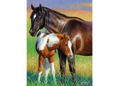 Card 3D Mare & Foal