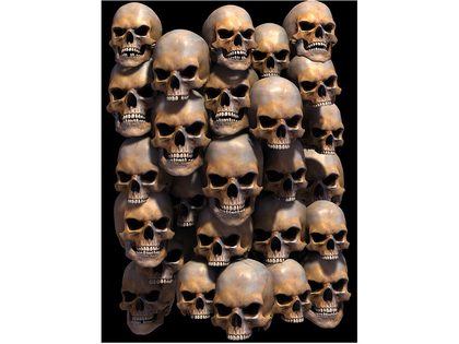 Picture 3D Skull wall