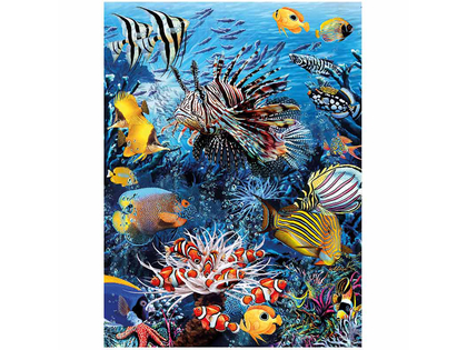 Picture 3D Wonders of the reef