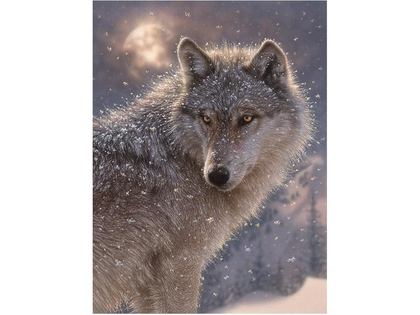 Picture 3D Lone wolf