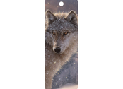 Bookmark 3D Lone wolf