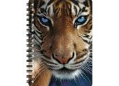 Notebook 3D Blue eyes large