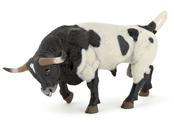 Bull Texas