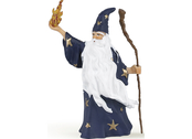 Magician Merlin
