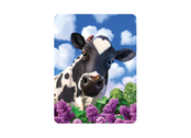 Magnet 3D Curious cow