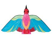 Drake Fågel