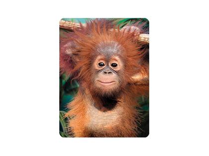 Magnet 3D Orangutangunge
