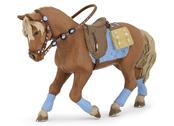 Häst till ung ryttare