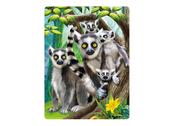 Kort 3D Lemurer