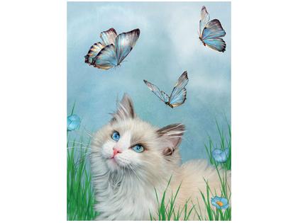 Bild 3D Katt & Blå Fjärilar