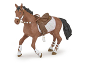 Horse for rider winter