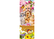 Bookmark 3D Kitten Fun Time
