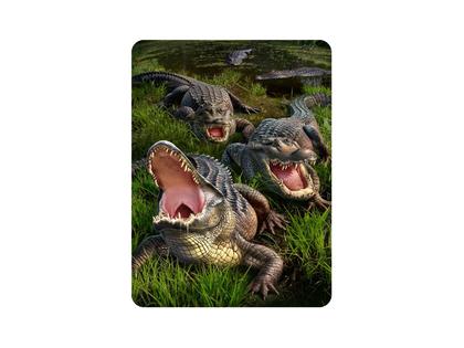 Magnet 3D Gator bog