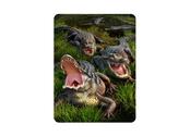 Magnet 3D Alligatorer