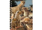 Notebook 3D Cheetah clan large