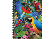 Notebook 3D Parrot pandemonia large