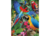 Card 3D Parrot pandemonia