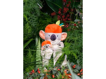 Blanky koala 'Dans la Jungle'