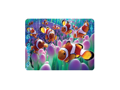 Magnet 3D Clown fish