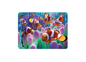 Magnet 3D Clown fish