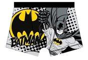 Batman boxer