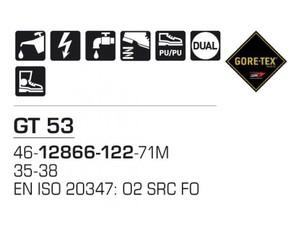GT 53