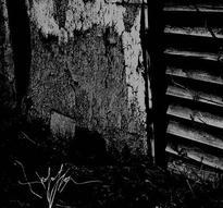 Isolation - Isolation [CD]
