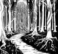 Siculicidium - Land Beyond the Forest [LP]