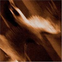 Agalloch - Ashes Against the Grain [CD]
