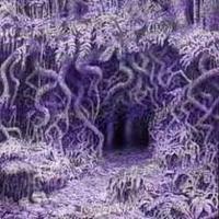 Ildjarn - Forest poetry [CD]
