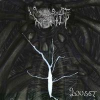 Woods of Infinity - Ljuset [CD]