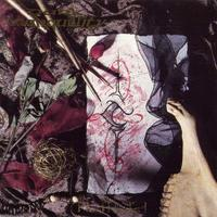 Dark Tranquillity - The Mind´s I [CD]