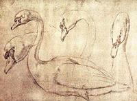 Ourry - Sepia Swan Study