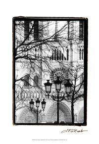 Laura DeNardo - Notre Dame Cathedral II