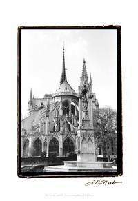 Laura DeNardo - Notre Dame Cathedral III