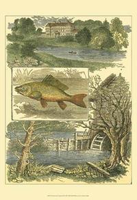 Vision Studio - Fisherman's Vignette II