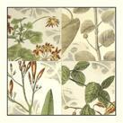 Vision Studio - Botanical Quadrant I