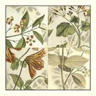 Vision Studio - Botanical Quadrant II