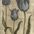 Vision Studio - Embellished Elephant Tulips I