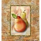 Abby White - Blushing Pears