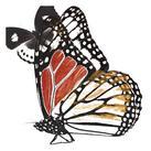 A. Project - Butterflies Dance IV