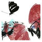 A. Project - Butterflies Dance VIII