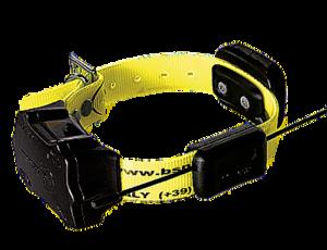Halsband BS119