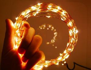 5m 50 LED String Seed Lights