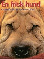 En frisk hund - Praktiska råd för hundens hälsa