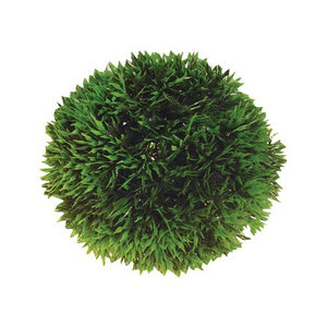 Plast växt-Plant ball 9cm