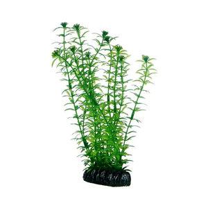 Plast växt- Lagarosiphon 20cm