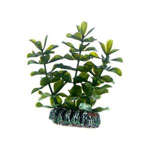 Plast växt- Bacopa 7cm